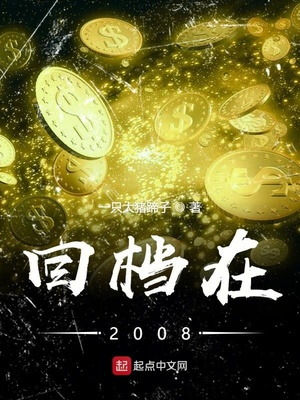 回档在2008封面