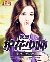 叶凡何思凝小说